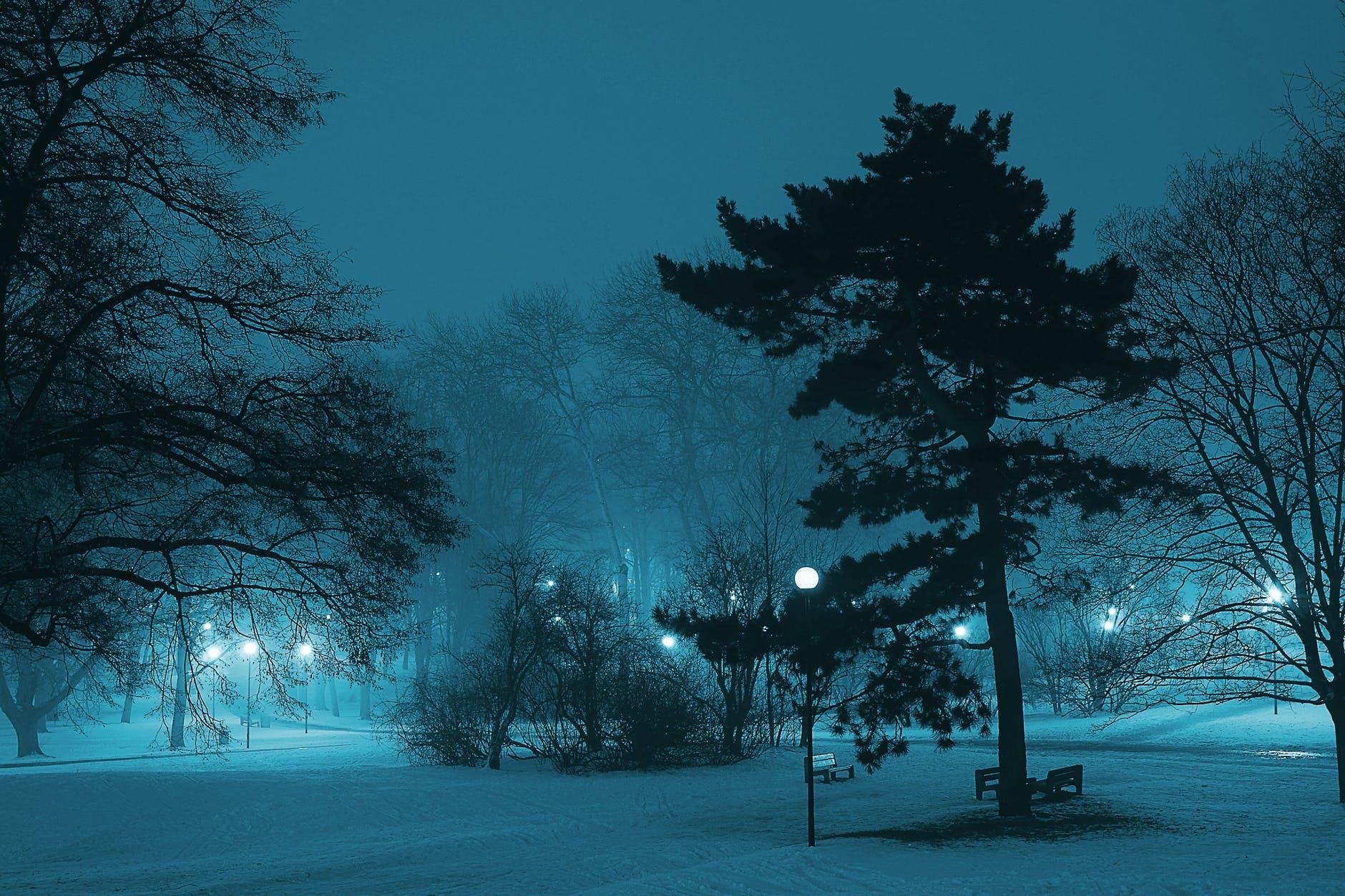 atmosphere branch cold dark